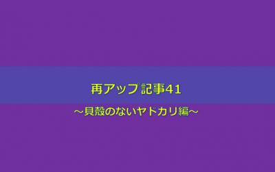 【貝殻のないヤドカリ編】再アップ記事41