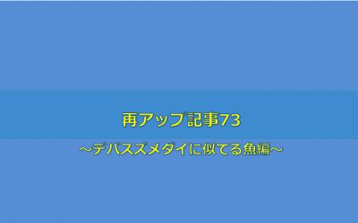 【デバスズメダイに激似のアオバスズメダイ編】再アップ記事73